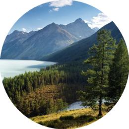 Летние практики в горах Алтая. Интенсив в месте силы — Аскате.